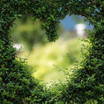 ¿Por qué a Libra le cuesta el amor?
